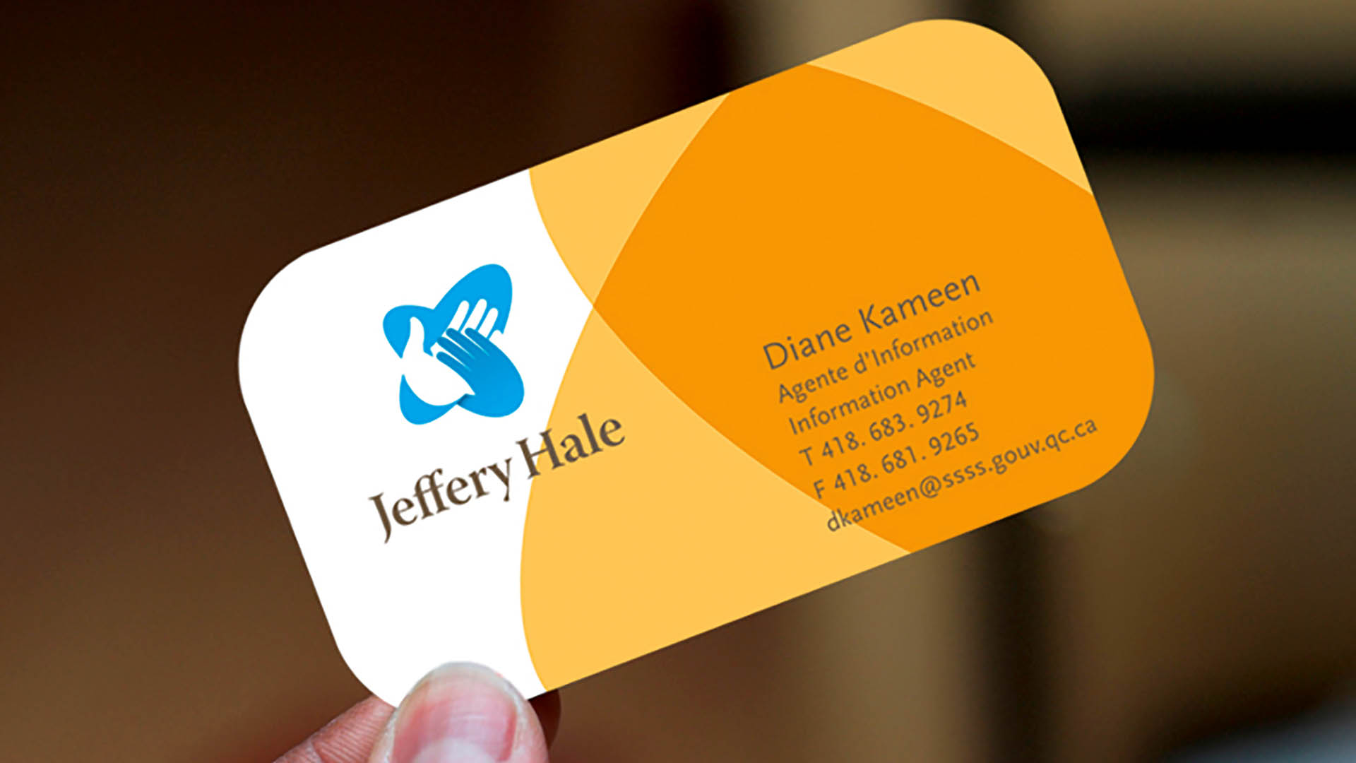 Jeffrey Hale Hospital, business cards, design system, brand and identity, logo, Romantic Brands, Michael Wou, Russell Volckmann